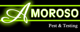 Connecticut Pest & Termite Inspections Logo